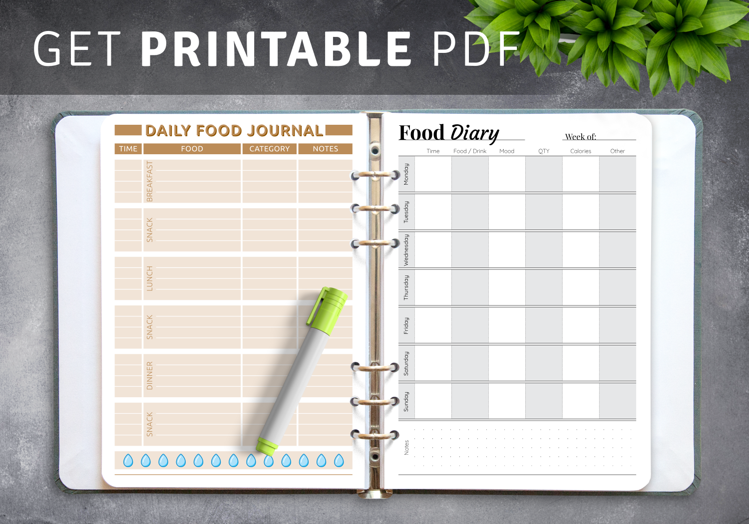 Best Food Diary Templates