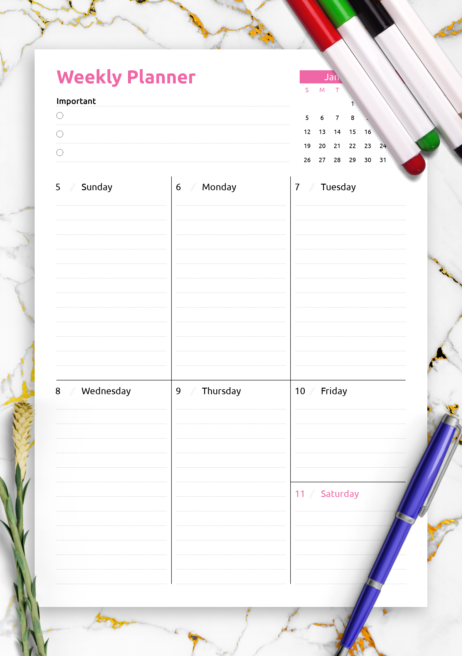 image about Free Weekly Planner Printables identify No cost Printable Coloured a single-web site weekly planner PDF Obtain