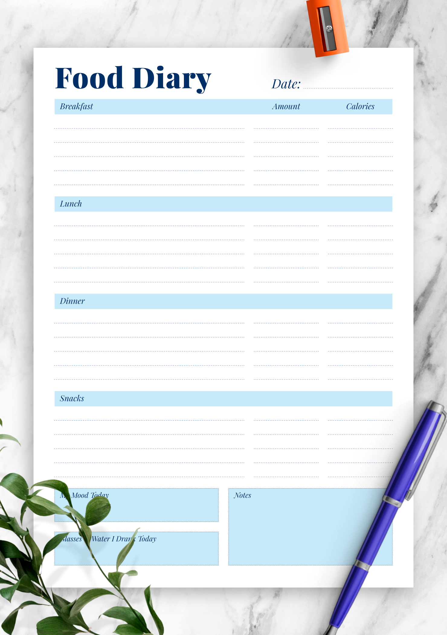 Download Printable Daily Food Diary Pdf
