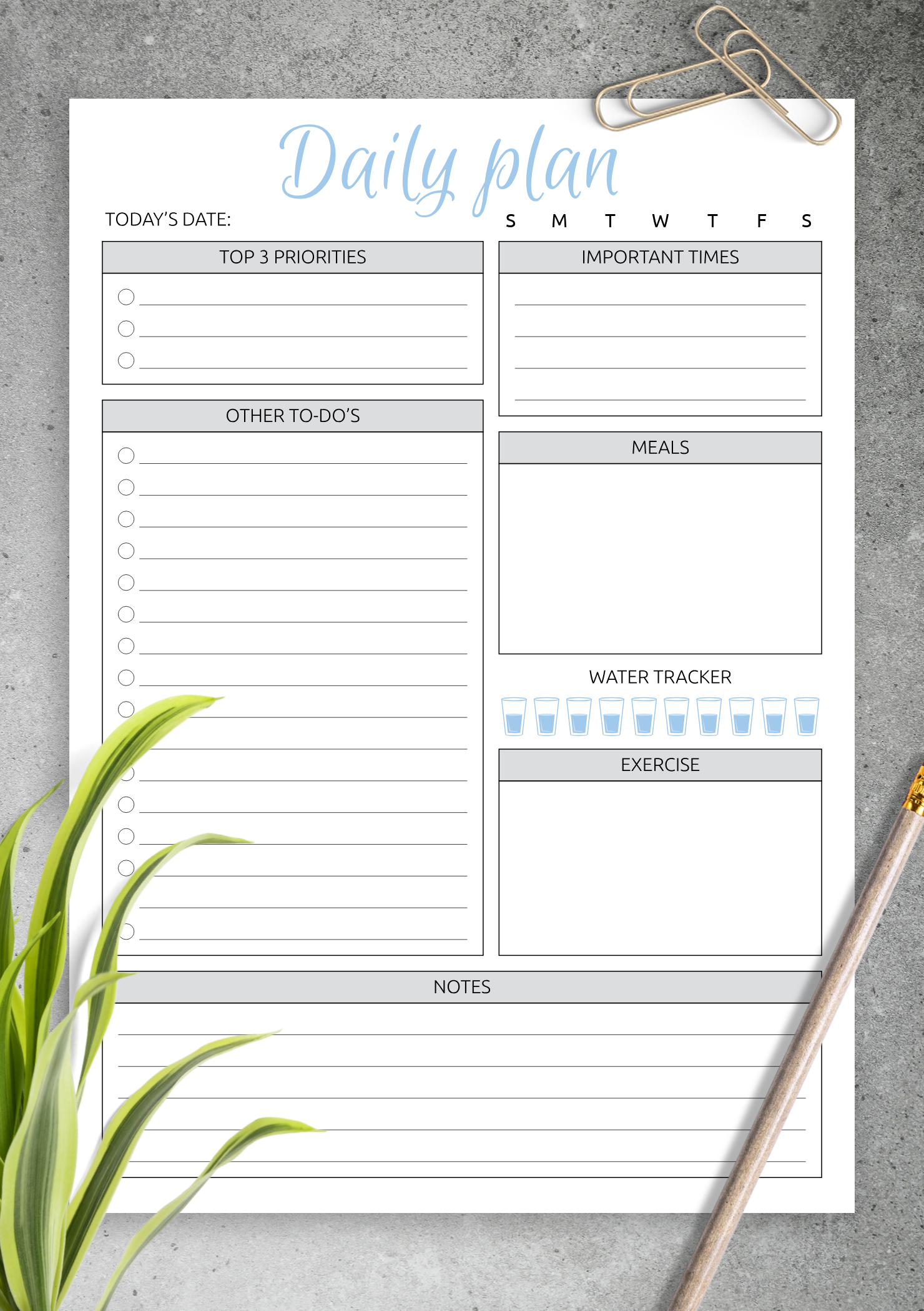 Download Printable Daily Plan with to do list & important times PDF